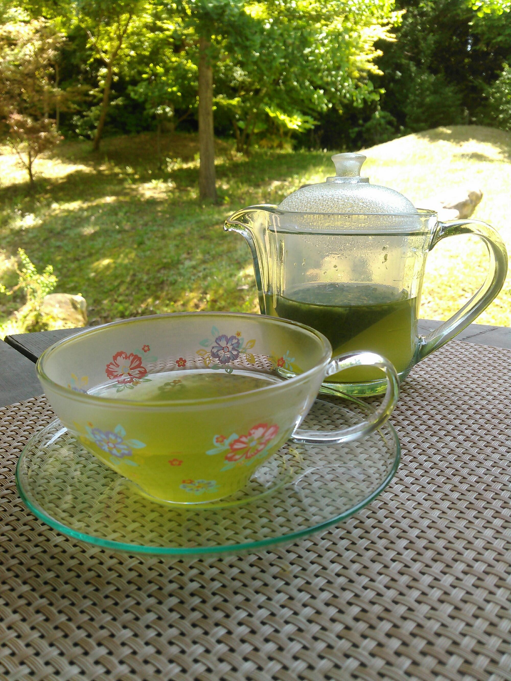 新茶シーズン到来!